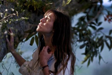 Настоящее кино: Дерево (Канны 2010) + Giallo